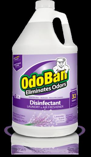 OdoBan Lavender Concentrate